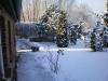 Waldhaus im Schnee